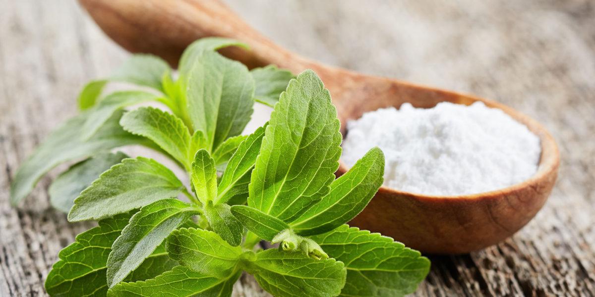 Best Stevia on the market